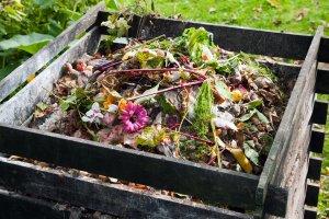 Kompostierung & Gartenabfälle